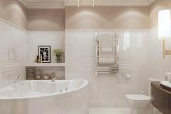 Bathroom_vid1