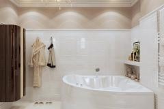 Bathroom_vid2