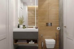 12_Bathroom_09_08_19_vid_01